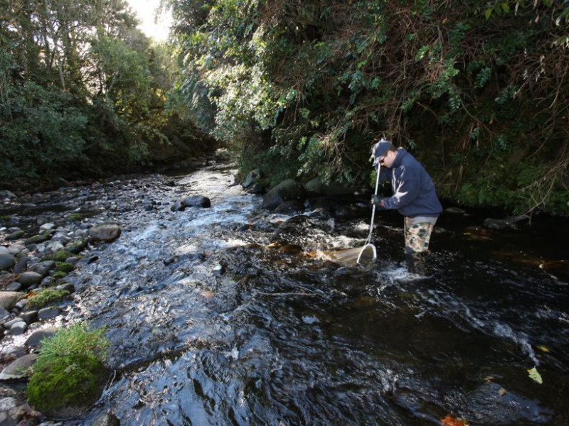 Ecological monitoring of waterways