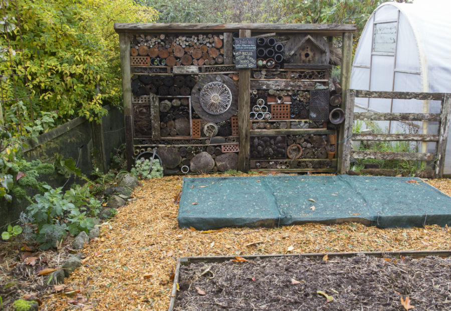 Hollard Gardens insect hotel