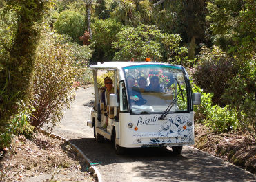 Mobility vehicle tour at Pukeiti